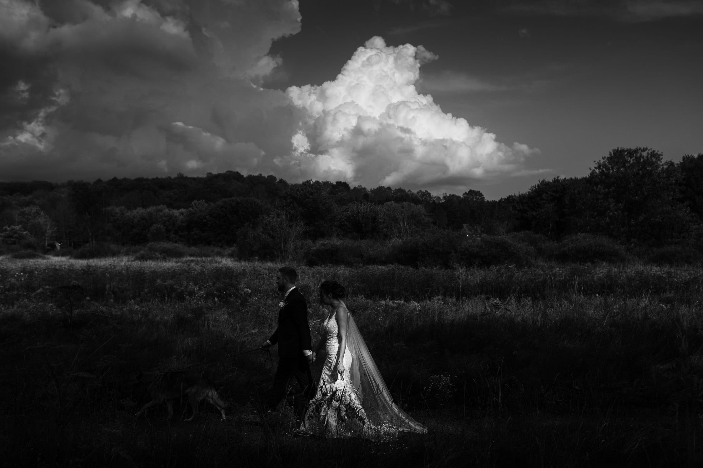 bride and groom moody black and white portrait the meadows